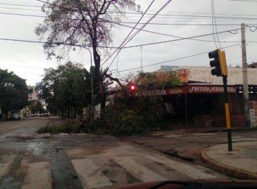 Capital. Temporal de viento, lluvia y granizo dejó graves daños
