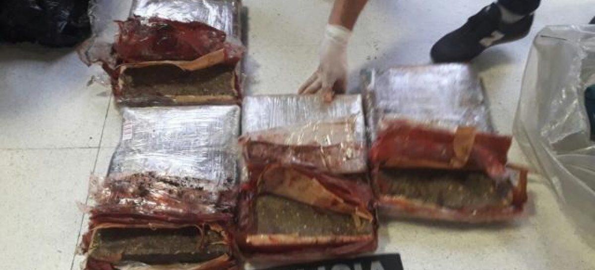Incautan casi 40 kilos de droga en la terminal riojana