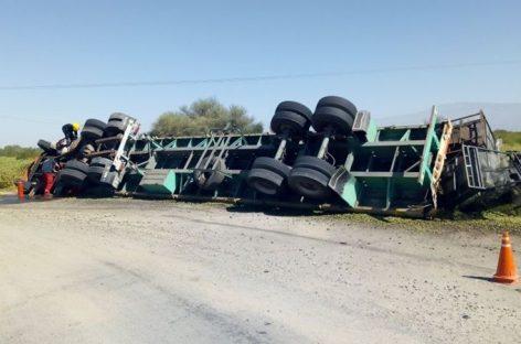 Volcó camión repleto de aceitunas: solo heridos