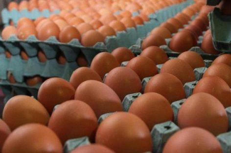 Insólito. Faltan huevos en góndolas y los que se venden subieron hasta 100%