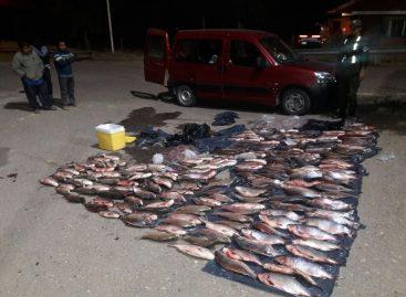 Gendarmería secuestró cientos de pescados sin cadena de frío