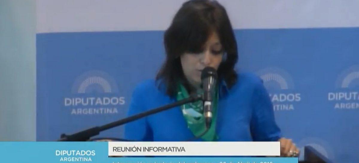 """""""En La Rioja un aborto cuesta entre 35 y 50 mil pesos"""""""