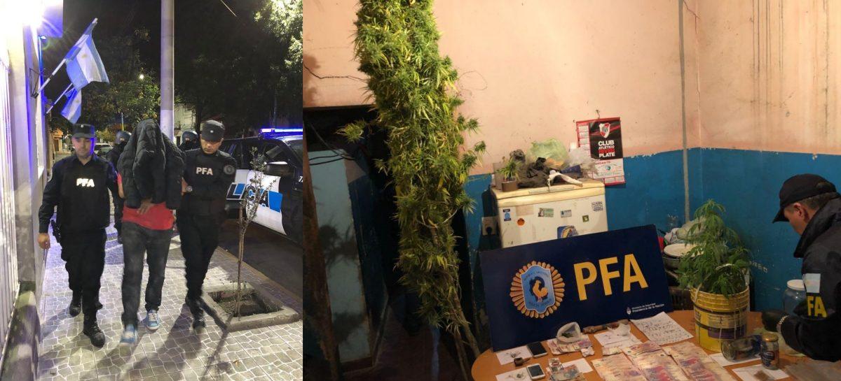 Encuentran marihuana, cocaína, LSD y plantas de cannabis: seis detenidos