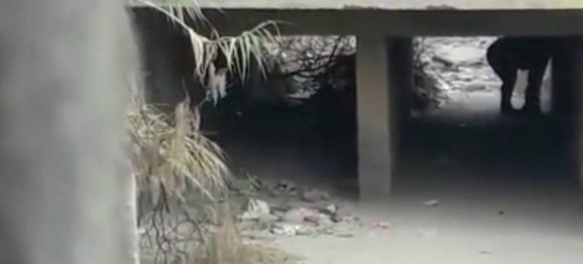 Infraganti. Los pescaron teniendo sexo bajo un puente en Chilecito