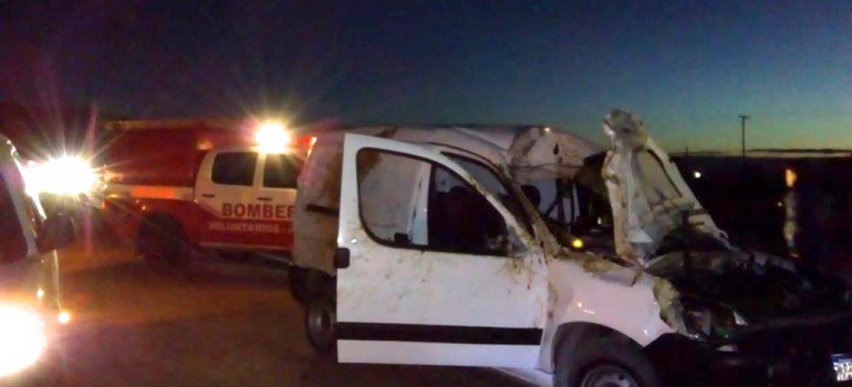 Ruta 38. Caballo suelto otro grave accidente: dos internados