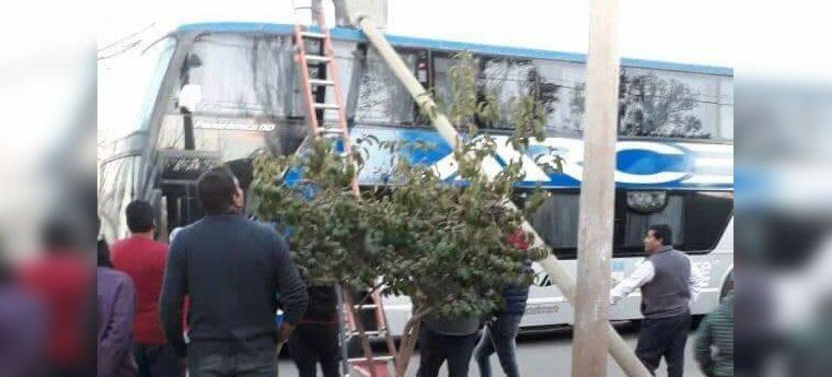 Un poste de luz cayó sobre un colectivo en Villa Castelli