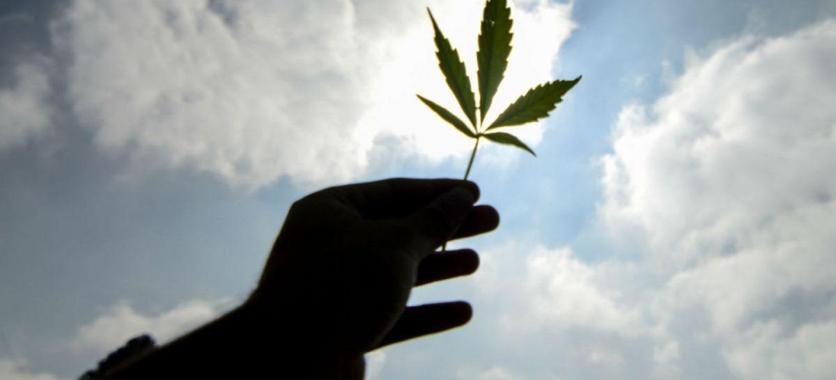 Tras el aborto, se debatirá despenalizar la marihuana