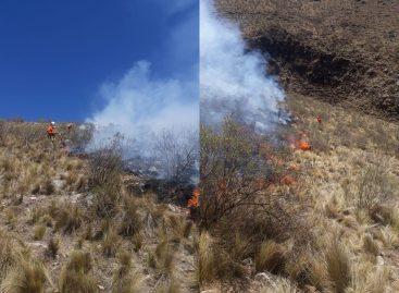 Chilecito. Fue controlado el incendio en el cerro Famatina