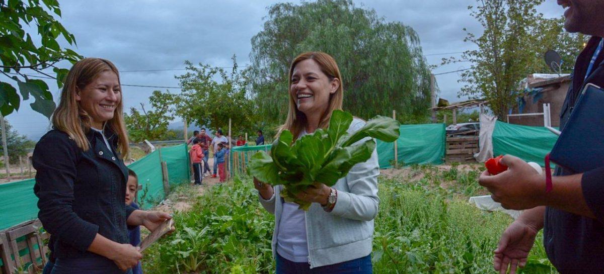 Huertas comunitarias, una ayuda a la crisis económica