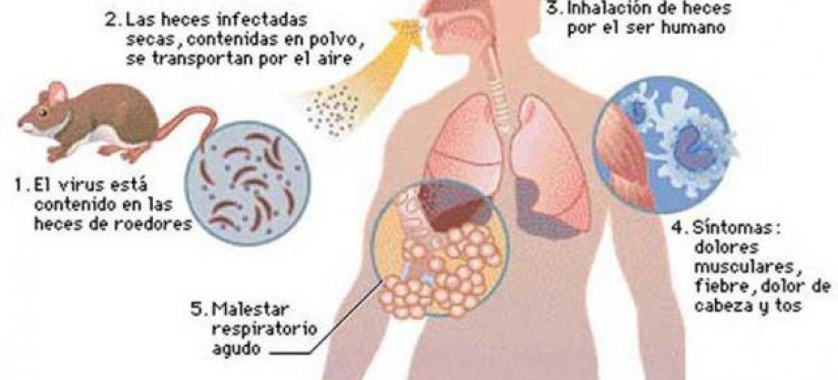 Descartan casos de hantavirus en territorio riojano