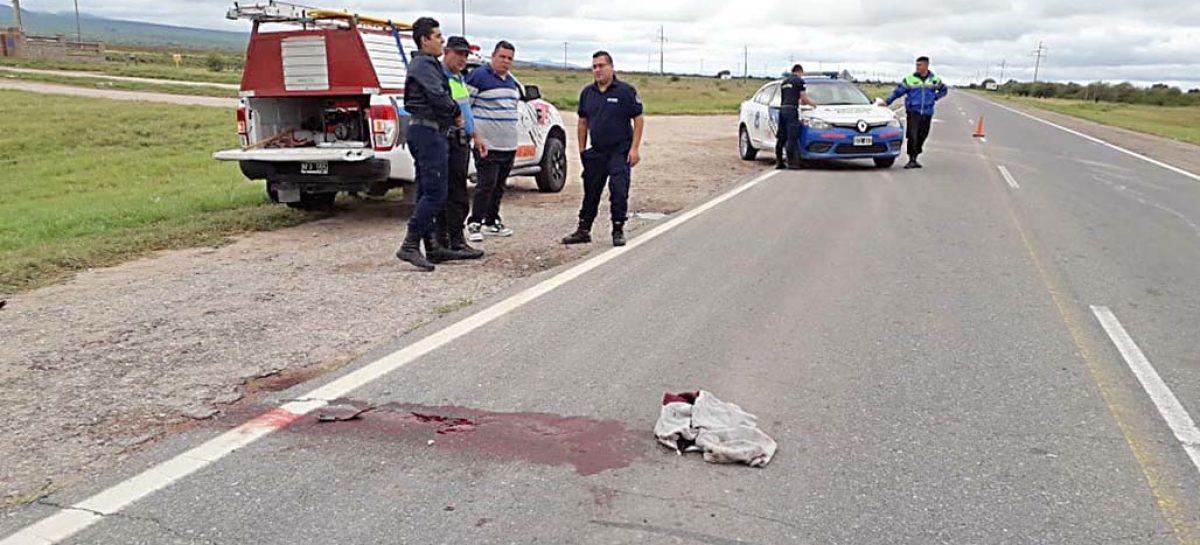 Murió el joven que fue atropellado mientras caminaba por ruta 38
