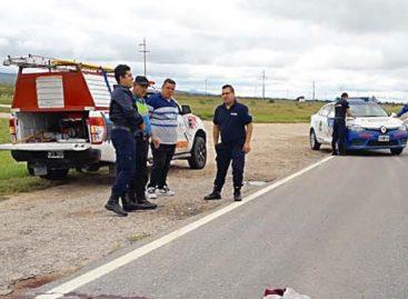 Joven pelea por su vida tras ser atropellado en Ruta 38