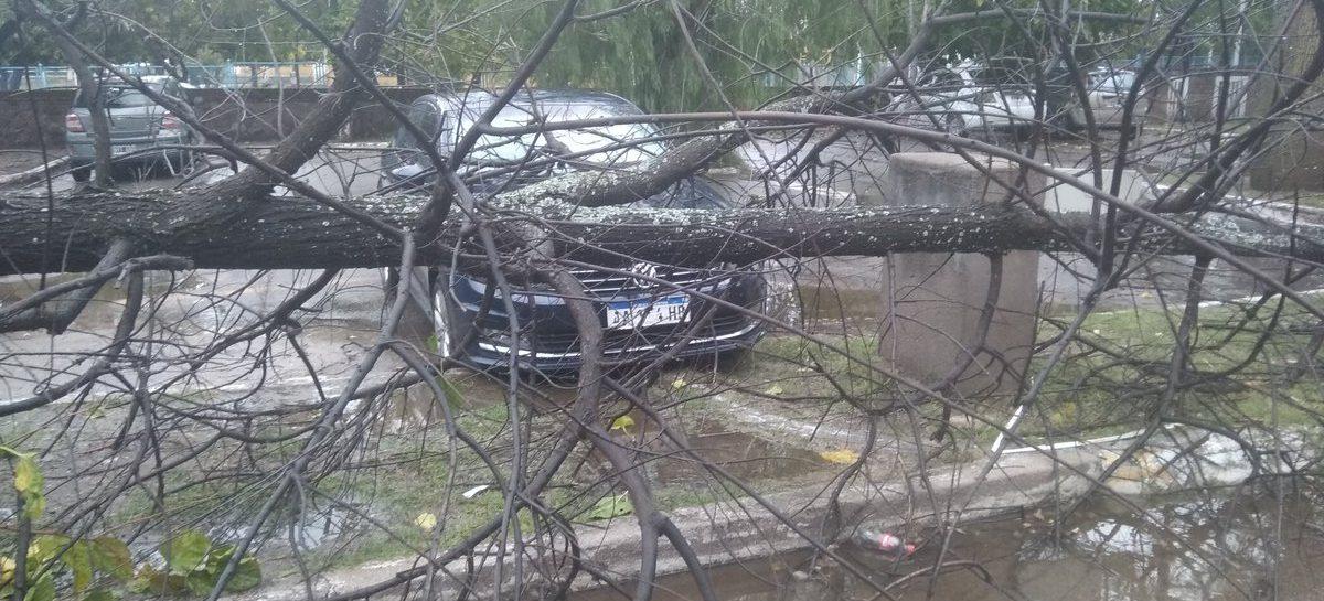Un temporal de viento, lluvia y granizo golpeó a la Capital