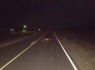 Grave accidente rutero deja como saldo un motociclista muerto