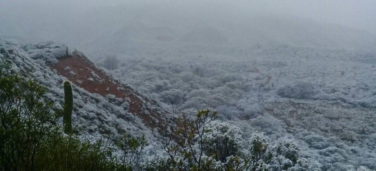 El frío también trajo nieve a localidades riojanas