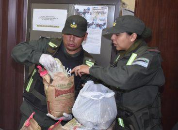 Golpe al narcotráfico: incautan más de 10 kilos de marihuana