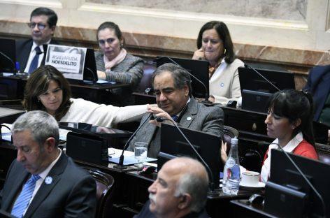 Con un homenaje, el Senado aprobó el último proyecto presentado por Olivares