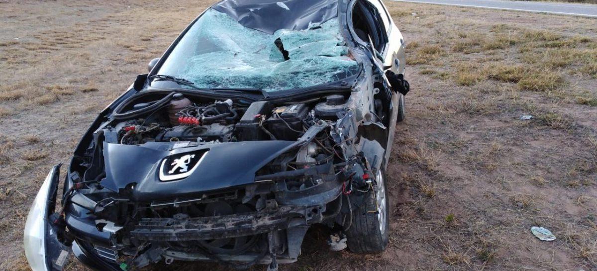 Un caballo provocó otro grave accidente rutero