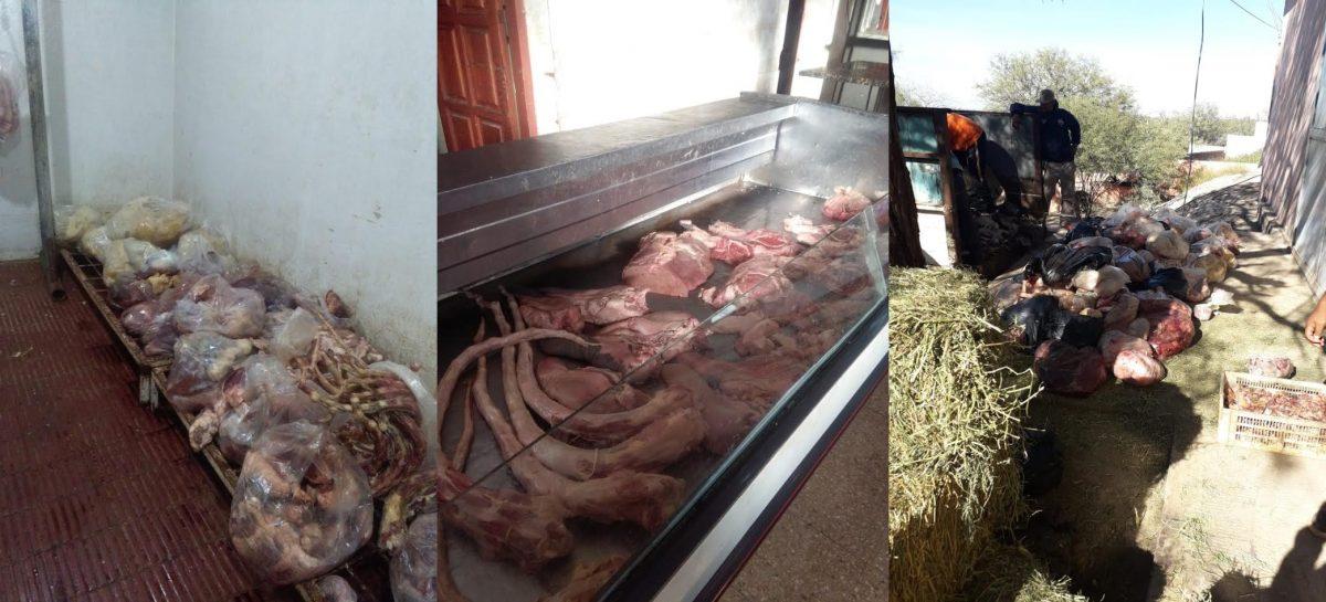 Decomisan más de 200 kilos de carne podrida en un frigorífico
