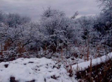 Sublime. La nieve cubrió a diversas localidades riojanas