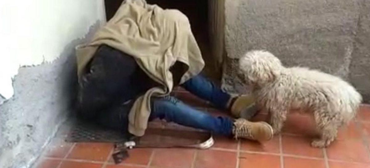 Vecinos atraparon delincuente cuando salía de robar vivienda