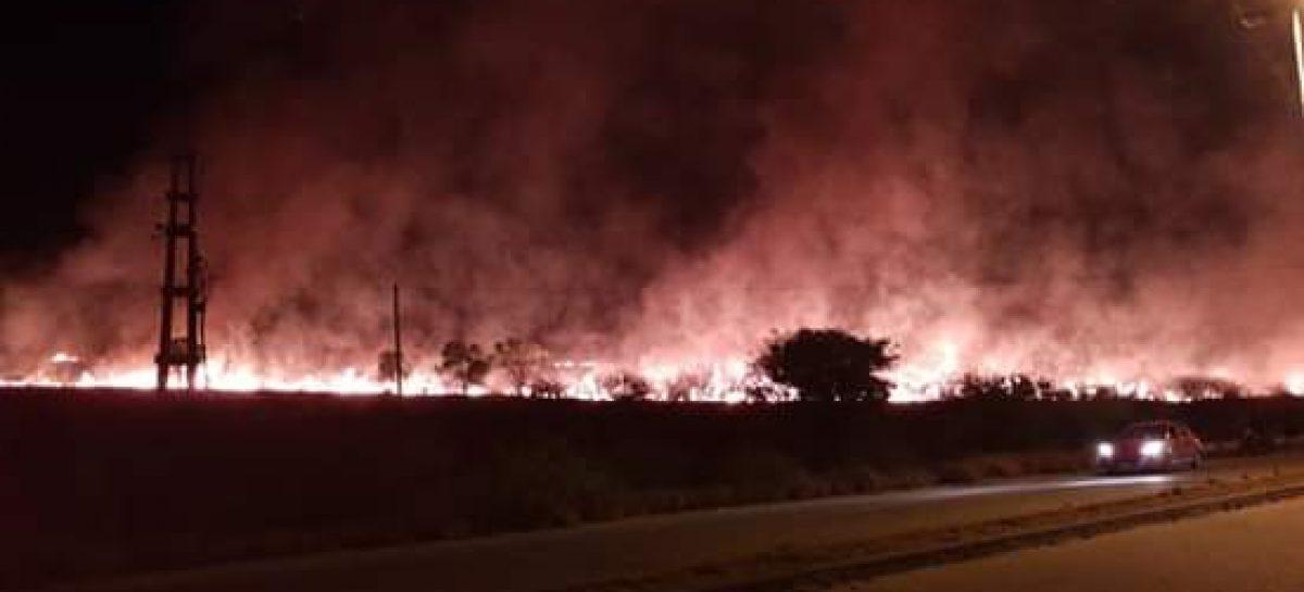 Voraz incendio consumió docenas de hectáreas en Circunvalación