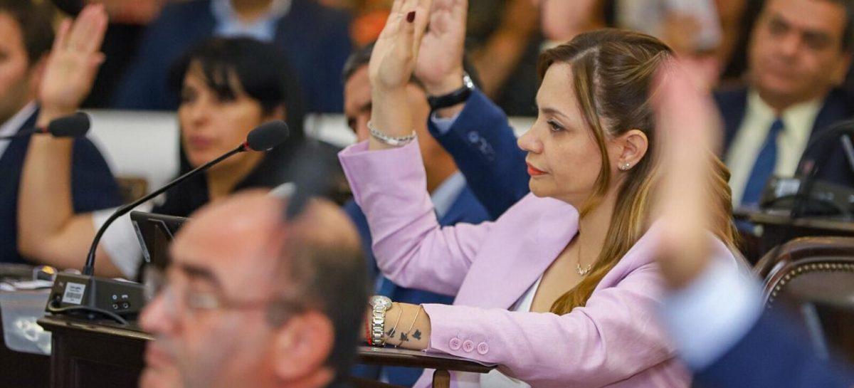 Diputados aprobó la Ley de Emergencia Social