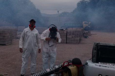 Aumentan los casos de dengue en La Rioja: 43 confirmados y 31 en estudio