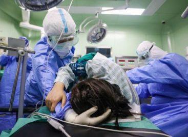 El coronavirus fue declarado pandemia por la Organización Mundial de la Salud