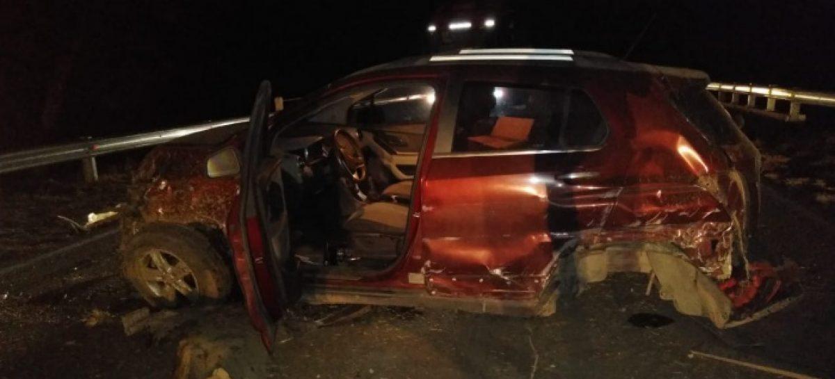 LOS ANIMALES SUELTOS CAUSARON OTRO GRAVE ACCIDENTE EN RUTA 38