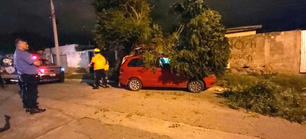 FUERTES VIENTOS DEJARON DAÑOS EN GRAN PARTE DE LA CAPITAL